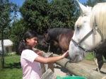 Adrita en een van de Normandische paarden